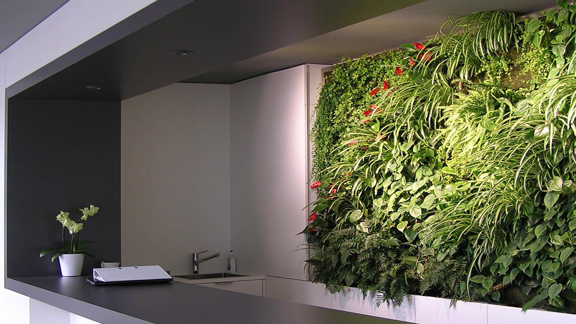 Vertiko Living Walls Indoor