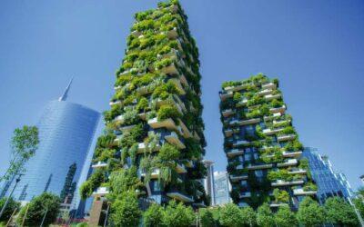 Begrünte Fassaden können Städte klimatisch entlasten