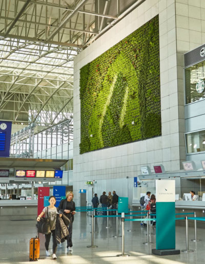 Flughafen, Frankfurt