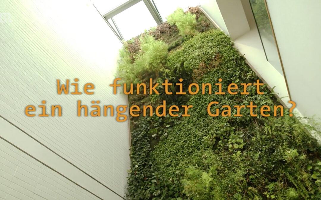 Hängende Gärten und Vertiko im BR
